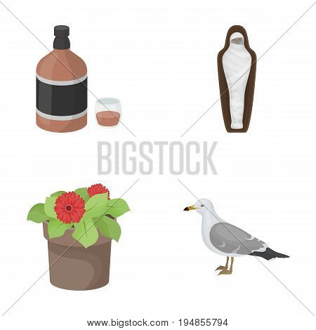alcohol, history and other  icon in cartoon style.plants, bird icons in set collection.