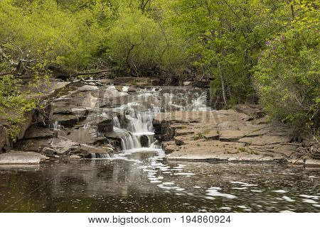Miller Creek Waterfall - A scenic creek in the woods with a waterfall.