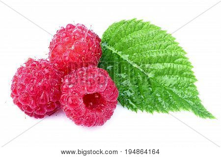 Raspberries with leaves in water isolated on white background.