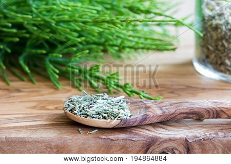 Fresh And Dried Horsetail On A Wooden Background