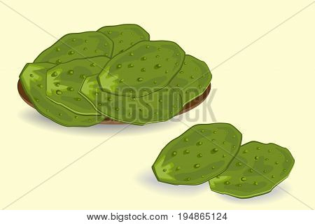 Edible green cactus leaves or nopales. Hand drawn vector illustration. Prickly Pear cactus paddleson the plate