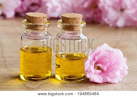 Two Bottles Of Essential Oil With Pink Cherry Blossoms