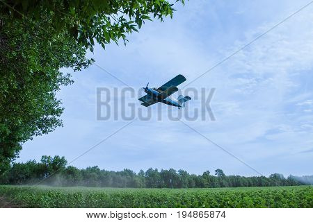 Agricultural airplane is gaining altitude after spraying the field	The biplane is flying close to the trees. Green sunflowers field is under the airplane and blue overcast sky is above.