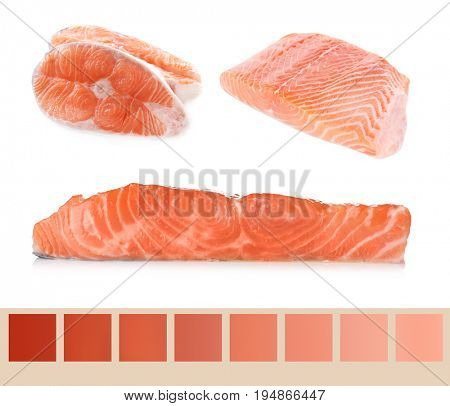 Salmon color lineal and fish pieces on white background