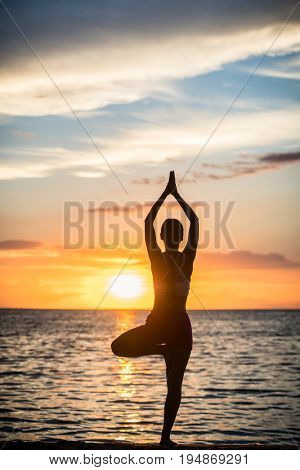 Full length rear view of a fit woman practicing the yoga tree pose for balance and a toned body outdoors on an idyllic beach at sunset