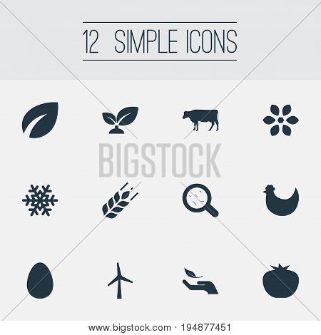 Vector Illustration Set Of Simple Ecology Icons. Elements Chicken, Spring, Easter And Other Synonyms Blossom, Leaves And Protection.