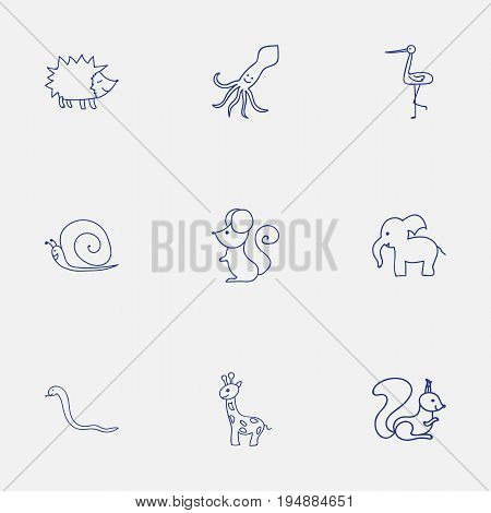Set Of 9 Editable Zoology Icons. Includes Symbols Such As Serpent, Chipmunk, Tall Animal And More. Can Be Used For Web, Mobile, UI And Infographic Design.