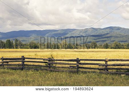 Landscape of a rural wild field with flowers fenced with a wooden fence against the background of green mountains and sky with clouds