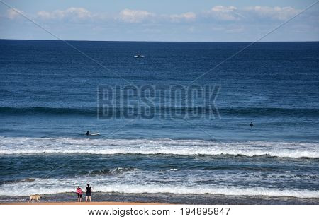 People relaxing and surfing at Copacabana Beach on a sunny day in winter time (Central Coast NSW Australia). A whale jumping in the background.
