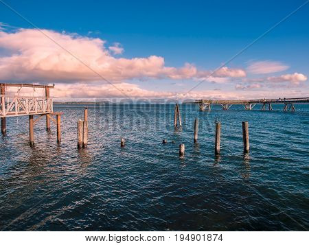 Cormorants sit on the piles near fishing pier in Sidney Vancouver Island Canada