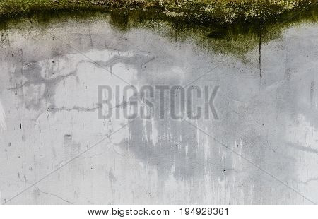Texture of a grey cement wall with green moss. Dirty streaks and cracks on the wall. Plaster cracked from exposure of water.