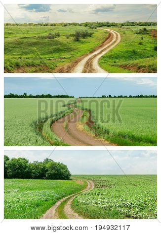 set of dirty roads in green agriculture field