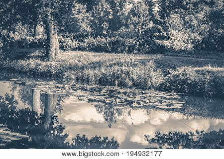Old vintage photo. Lake river reflected clouds sky park forest copy space