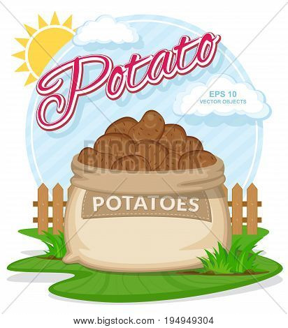 Vector illustration of eco products. Potatoes in burlap sack. Full sacks with fresh vegetables. Bag with harvest on the summer garden. Harvesting and food concept