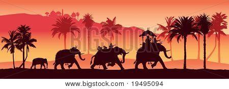 Vector illustration of  Indian elephants