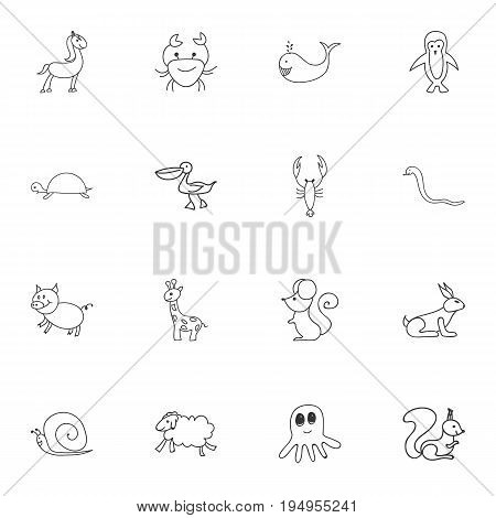 Set Of 16 Editable Zoology Icons. Includes Symbols Such As Lobster, Polar Bird, Rabbit And More. Can Be Used For Web, Mobile, UI And Infographic Design.