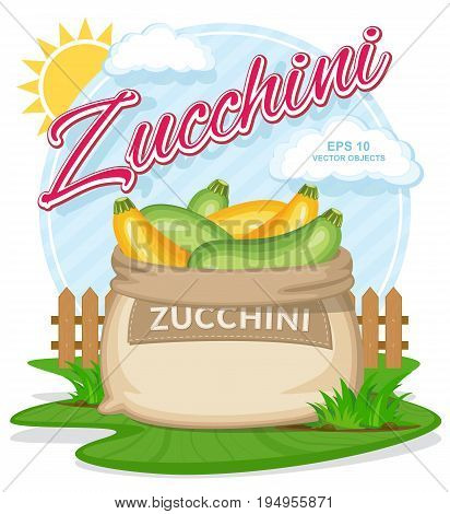 Vector illustration of eco products. Ripe Zucchini in burlap sack. Full sacks with fresh vegetables. Bag with harvest on the summer garden. Harvesting and food concept