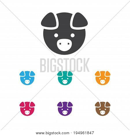 Vector Illustration Of Zoology Symbol On Pig Icon. Premium Quality Isolated Hog Element In Trendy Flat Style.