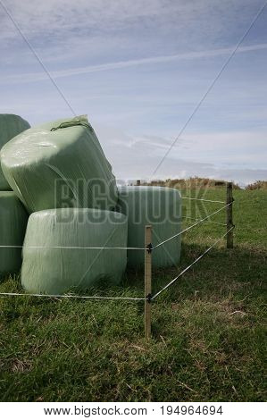 Green wrapped silage surrounded by wire fencing in front of a summer sky.