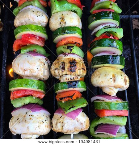 Three Colourful Shish Kabobs with Chicken Onions Mushrooms and Peppers on a Barbeque