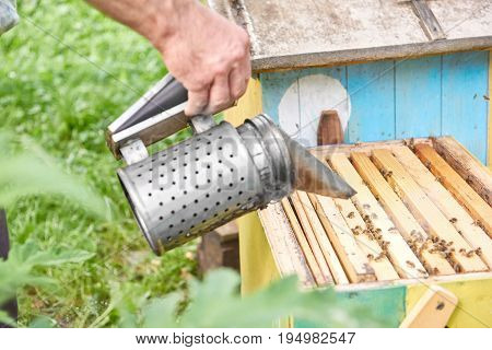 Cropped shot of a beekeeper using bee smoker while working in his apiary in the garden copyspace professional tool equipment technology honey producing organic natural concept.