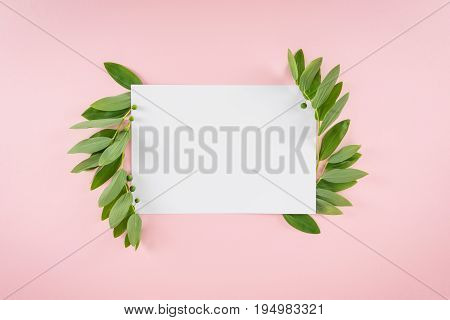 Top View Of Blank Card With Fresh Green Leaves Isolated On Pink