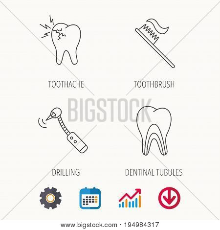 Toothache, drilling tool and toothbrush icons. Dentinal tubules linear sign. Calendar, Graph chart and Cogwheel signs. Download colored web icon. Vector