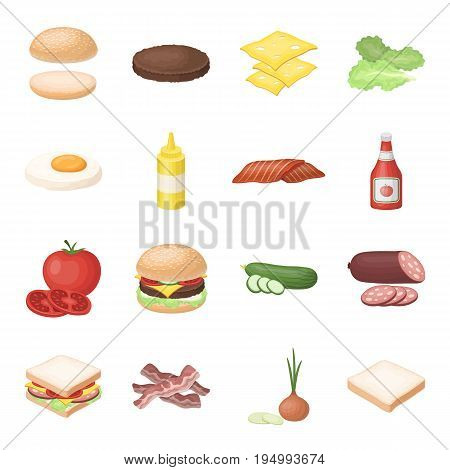 Rolls, cutlets, cheese, ketchup, salad, and other elements. Burgers and ingredients set collection icons in cartoon style vector symbol stock illustration .