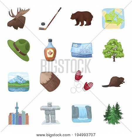 Wild animal, deer, horns and other Canada elements. Canada set collection icons in cartoon style vector symbol stock illustration.