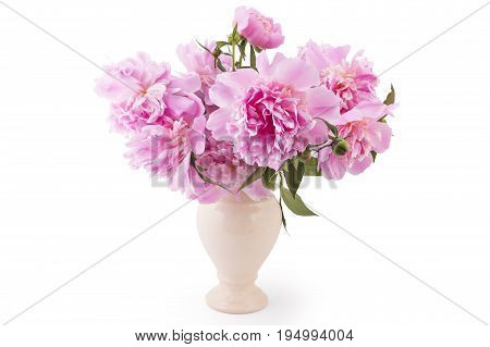 Bouquet of beautiful pink peony flowers, Paeonia lactiflora, i a vase isolated on white background