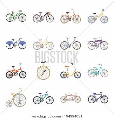 Different models of bicycles. Different bicycle set collection icons in cartoon style vector symbol stock illustration .