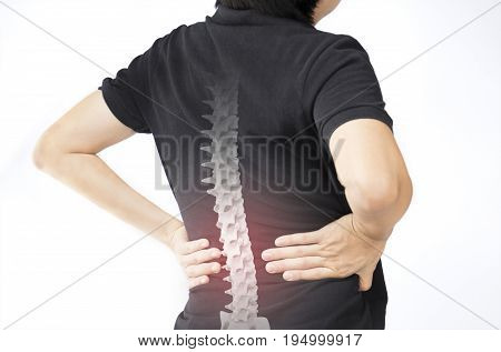 spine bones injury white background spine pain