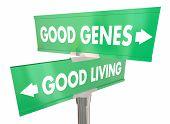 Good Genes Living Street Road Signs Longevity 3d Illustration poster