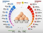 Vitamins and minerals of chicken egg. Infographics about nutrients in raw egg. Best vector illustration for bird eggs food poultry farming vitamins health food nutrients diet etc poster
