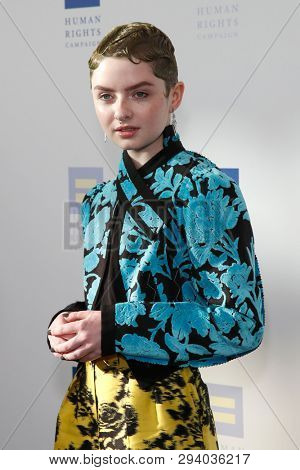 LOS ANGELES - MAR 30:  Lachlan Watson at the Human Rights Campaign 2019 Los Angeles Dinner  at the JW Marriott Los Angeles at L.A. LIVE on March 30, 2019 in Los Angeles, CA