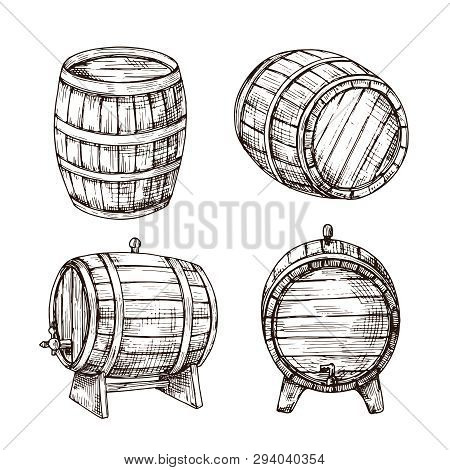 Sketch Barrels. Whiskey Oak Casks. Wooden Wine Barrel In Vintage Engraving Style. Bar, Pub And Brewe