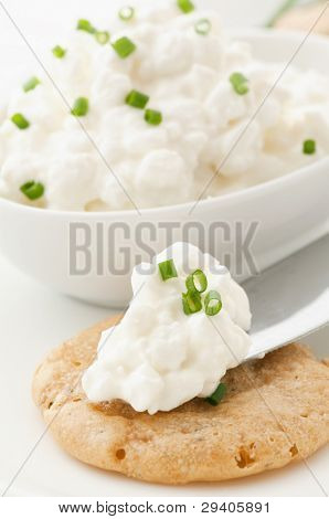Cottage Cheese on a Cracker