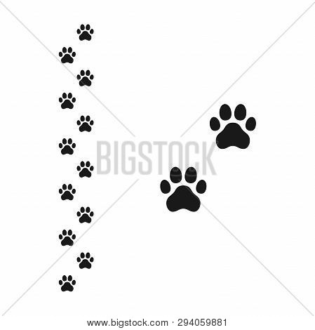 Dog Paw Footprint Vector & Photo (Free Trial) | Bigstock