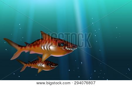 Blue Background Tiger Sharks Wild Predator Toothy, Hungry And Angry With Big Teeth. Small Flock Fish