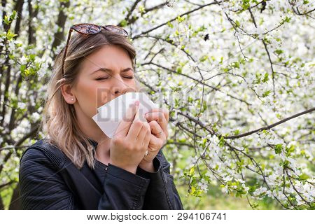 Young Woman With Allergy Symptoms, Sneezing, Blowing Her Nose, Springtime