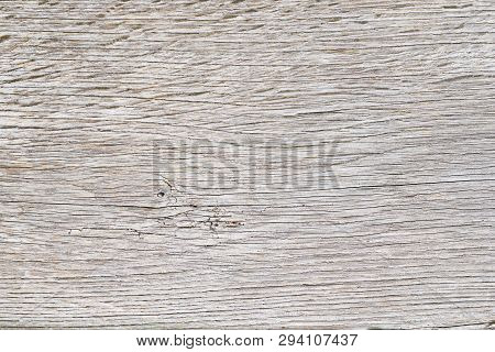 Old White Oak Wood For Background Or Old Grey Wooden Texture. Old Oak For Vintage Table Or Furniture