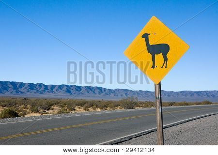 Lama Sign in the andes