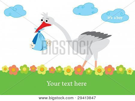 baby boy announcement card. vector illustration poster