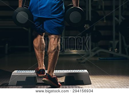 Back View Of Strong Healthy Athlete With Dumbbells Training In Gym