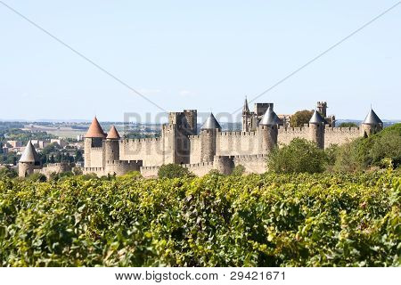 Fortress Of Carcassonne And Vineyard