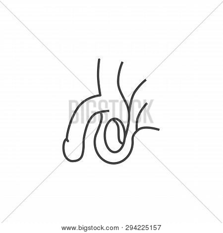 Male Reproductive System Related Vector Line Icon. Isolated On White Background. Editable Stroke.
