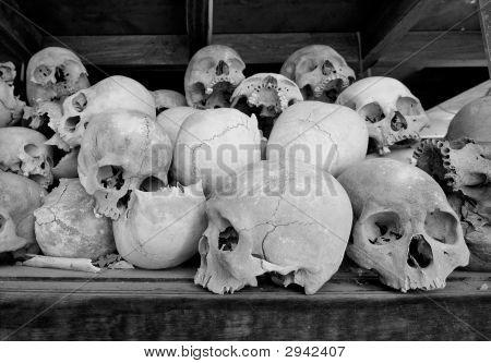 Human Skulls At The Killing Fileds