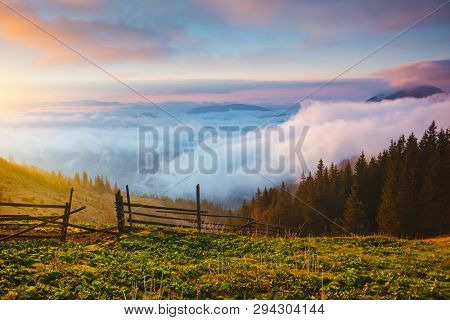 Panoramic view of the misty mountains in the countryside. Location place Carpathian mountains, Ukraine, Europe. An attractive summer scene. Fresh seasonal background. Discover the beauty of earth.