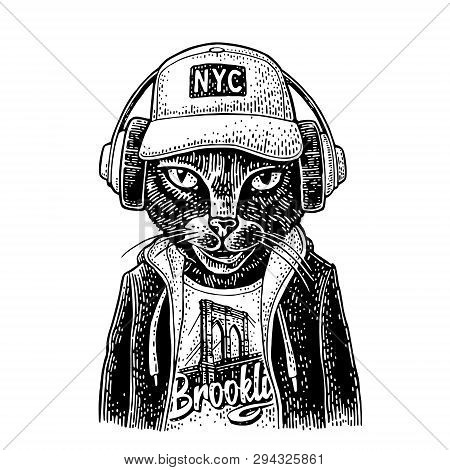Cat To Headphones Dressed In The Hoodie. Vintage Black Engraving