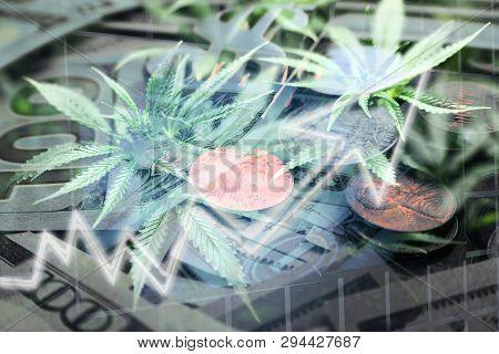 Marijuana Penny Stocks Soaring High Quality Stock Photo